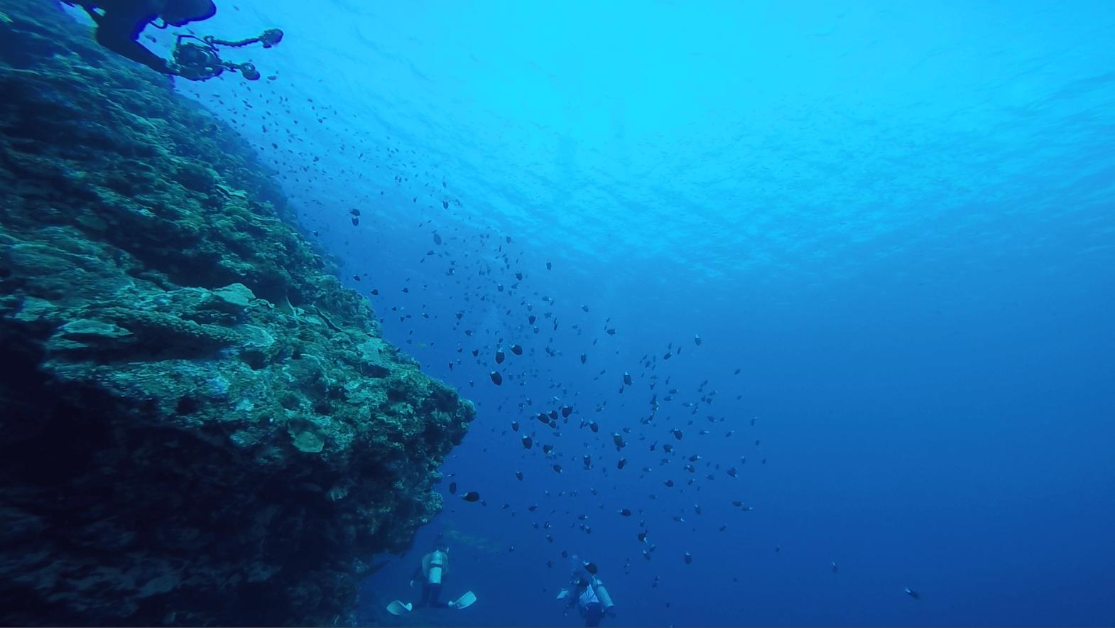 ケラマブルーの画像(透明度抜群の海)