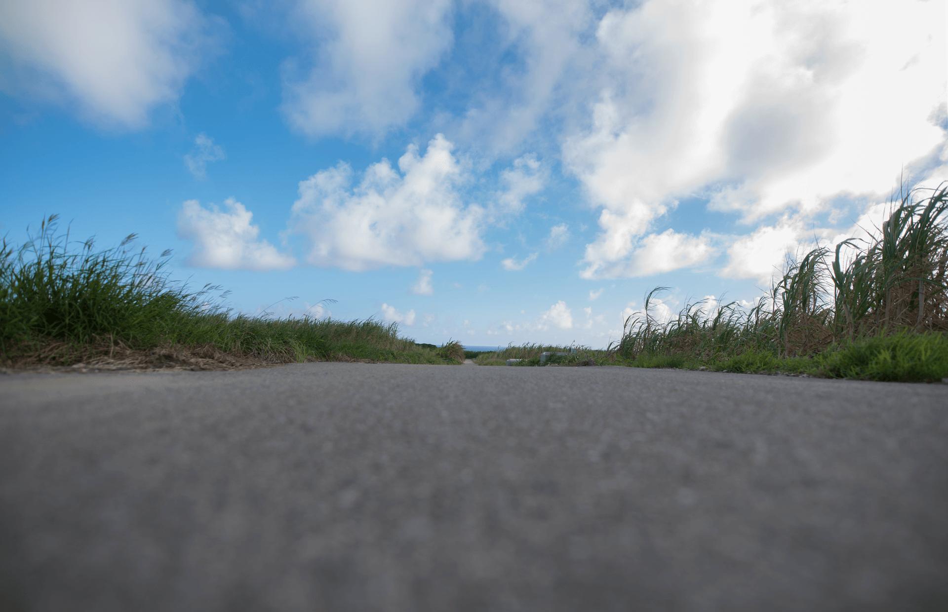 一眼レフカメラを地面に置いて撮影した畑道の写真