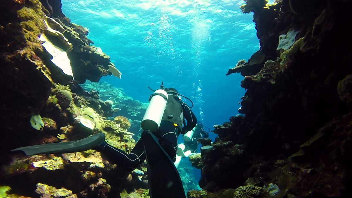 洞窟とダイバーの水中写真画像