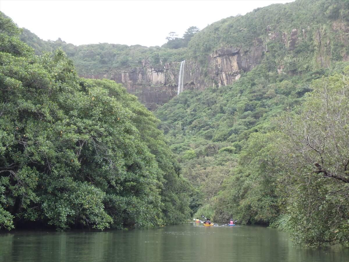 川からマングローブ越しに見える滝