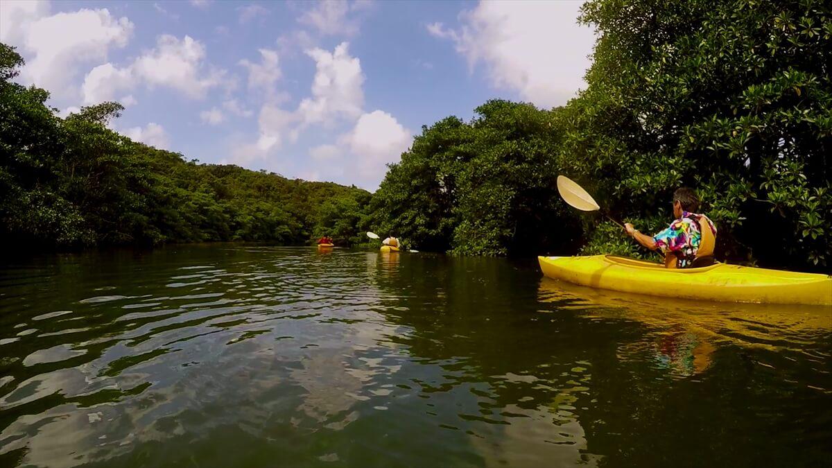 カヤックで川を下りマングローブ探検1