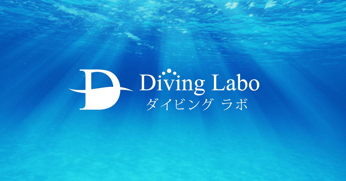 ダイビングラボのサムネイル画像(ロゴ)