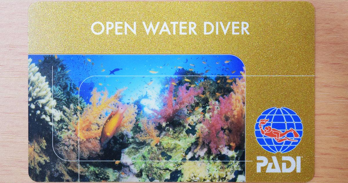 オープン・ウォーター・ダイバー(OW、OWD)のサムネイル画像