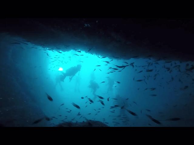 五島列島でのダイビング画像