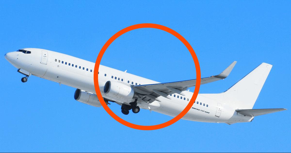 飛行機の写真画像